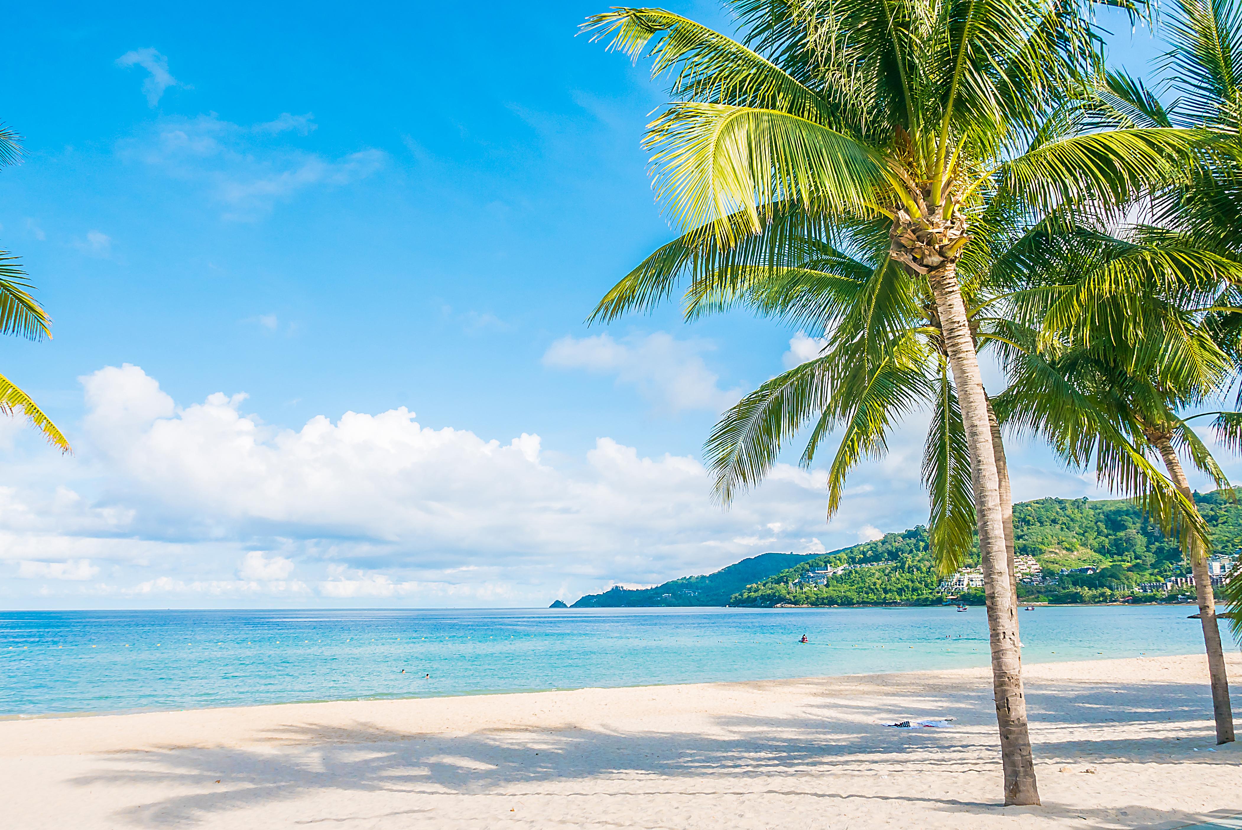 Sale una playa tropical para representar qué imágenes no debes utilizar en tu curriculum.